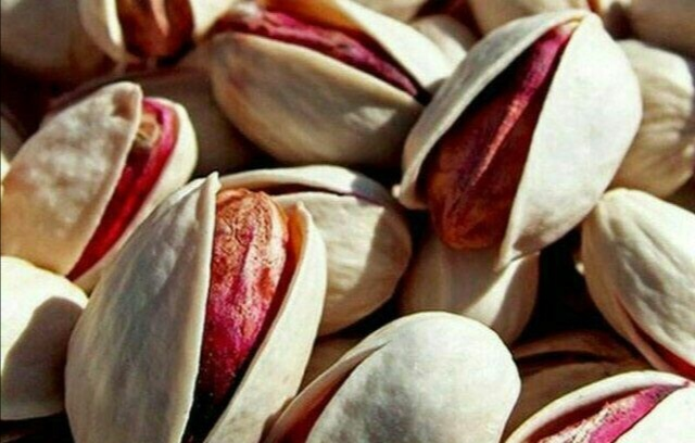 Opening of the first almond and round pistachio warehouse in iran commodity exchange market